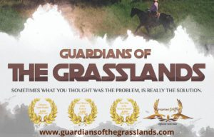 Movie Matinee with the Lambton Cattlemen - Guardians of the Grasslands (Sarnia) @ Sarnia Library Theatre